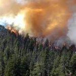Природные пожары: из чего состоит дым